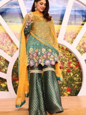 SANAM JUNG Latest Embroidered Net Collection Replica 2018