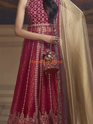 ANAYA Luxury SCARLET BLUSH Embroidered Bridal Chiffon Collection Replica