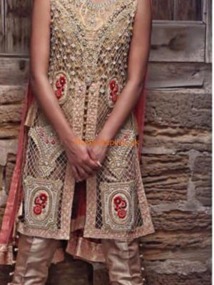 DESIGNER Luxury Latest Embroidered Net Collection Replcia