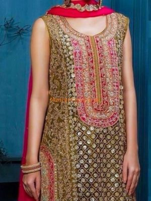 AISHA IMRAN Luxury Embroidered Net Collection Replica