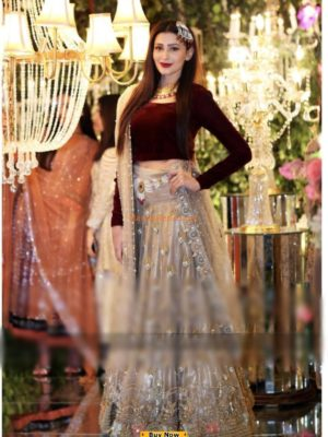 INDIAN Luxury Embroidered Party Wear Velvet Collection Replica