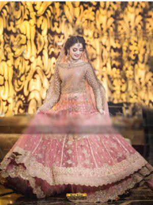 SANA SAFINAZ Luxury Embroidered Bridal Wear Net CollectiSANA SAFINAZ Luxury Embroidered Bridal Wear Net Collection Replican Replica
