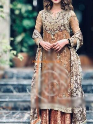 DESIGNER Latest Embroidered Net Collection Replica
