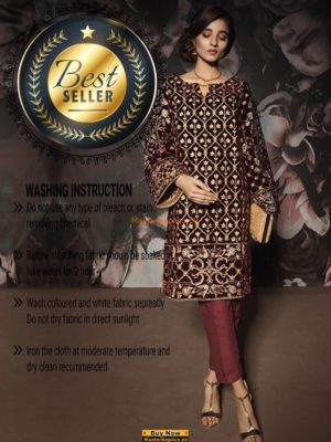 GULAAL LUXURY EMBROIDERED VELVET COLLECTION 2018 MASTER REPLICA