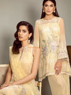BAROQUE LUXURY EMBROIDERED CHIFFON COLLECTION 2018 MASTER REPLICA