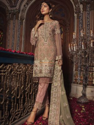 EMB ROYAL Luxury 05-Soft Blush Embroidered Bridal Wear Chiffon Collection Replica