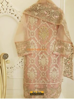 AGHA NOOR Organza And Net Master Replica 2019