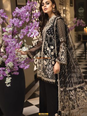ANAYA Collection 2019