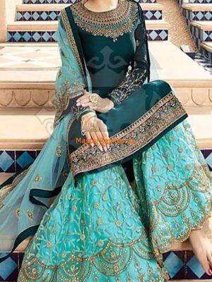 INDIAN Chiffon Party Wear